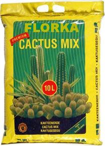 florka-para-cactus