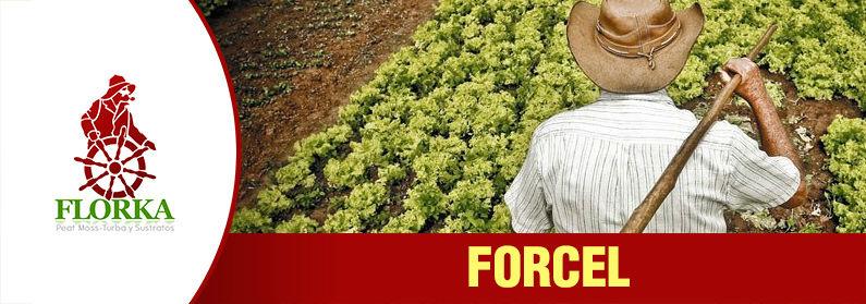 Fertilizante forcel
